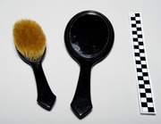 Select Brush and Mirror Set